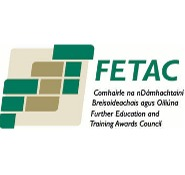 Further Education and Training Awards Council (FETAC) qualified installers